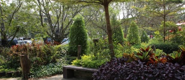 การจัดสวน,สวนธรรมชาติ